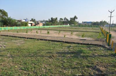 Gallery Cover Image of  Sq.ft Residential Plot for buy in Thirumazhisai for 2250000