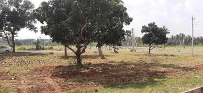 1200 Sq.ft Residential Plot for Sale in Mysuru, Mysore