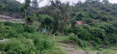 1800 Sq.ft Residential Plot for Sale in Malsi, Dehradun