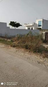 Gallery Cover Image of 1000 Sq.ft Residential Plot for buy in Palwali for 900000