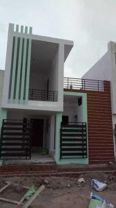 Gallery Cover Image of 1050 Sq.ft 3 BHK Independent House for buy in Omaxe City for 2800000
