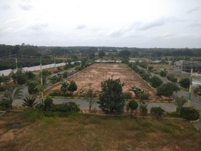 Gallery Cover Image of 1200 Sq.ft Residential Plot for buy in Hoskote for 3240000