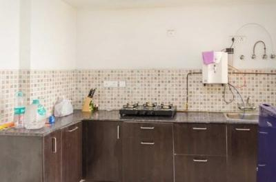 Kitchen Image of 3 Bhk In Pan Oasis in Sector 70