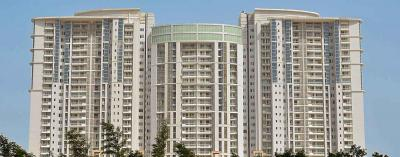 Gallery Cover Image of 4200 Sq.ft 4 BHK Apartment for rent in DLF The Belaire, Sector 54 for 130000
