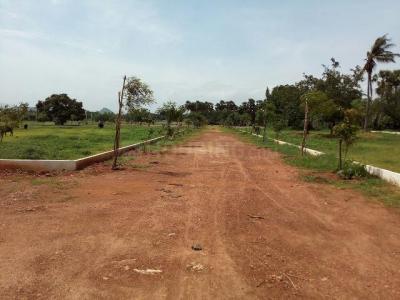 220 Sq.ft Residential Plot for Sale in Konthamuru, Rajahmundry