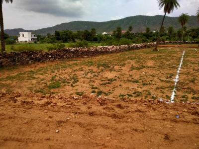 1100 Sq.ft Residential Plot for Sale in Sector 9, Udaipur