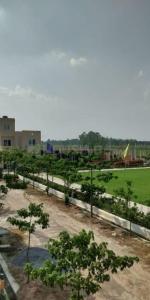 1200 Sq.ft Residential Plot for Sale in Mohanlalganj, Lucknow