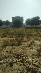 250 Sq.ft Residential Plot for Sale in Sector 78, Faridabad