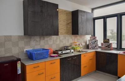 Kitchen Image of Gandhi House S F in Sushant Lok I