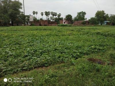 17139 Sq.ft Residential Plot for Sale in Danapur, Patna