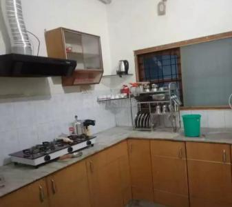 Gallery Cover Image of 2300 Sq.ft 3 BHK Apartment for rent in Majra for 23000