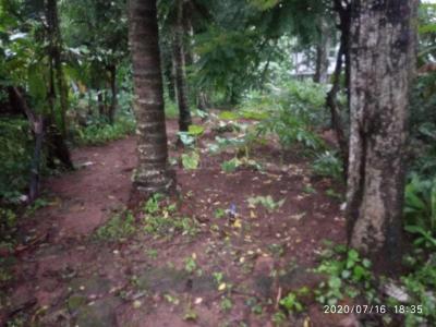 3100 Sq.ft Residential Plot for Sale in Puzhakkal, Thrissur
