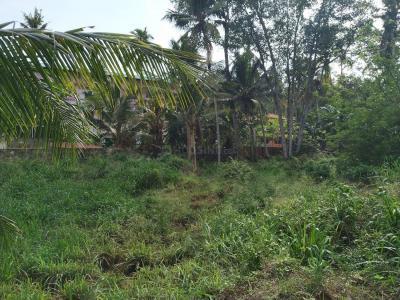 Gallery Cover Image of  Sq.ft Residential Plot for buy in Vizhinjam for 81000000