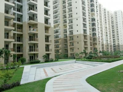 Gallery Cover Image of 950 Sq.ft 2 BHK Apartment for buy in Noida Extension for 3200000