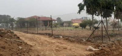 900 Sq.ft Residential Plot for Sale in Garhi Harsaru, Gurgaon