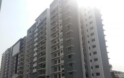 Gallery Cover Image of 2170 Sq.ft 3 BHK Apartment for rent in Bellandur for 43000