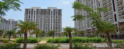 Gallery Cover Image of 1900 Sq.ft 3 BHK Apartment for rent in DLF New Town Heights, Sector 86 for 14000