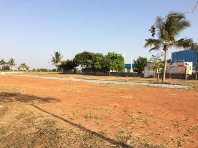 Gallery Cover Image of  Sq.ft Residential Plot for buy in Thirunindravur for 393750