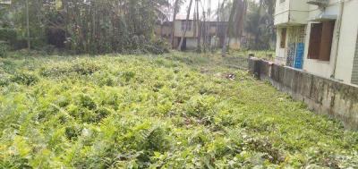 10080 Sq.ft Residential Plot for Sale in Birati, Kolkata