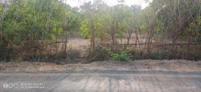 27000 Sq.ft Residential Plot for Sale in Radha Krishna Nagar, Chiplun