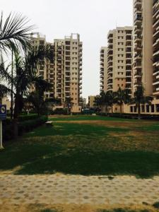 Gallery Cover Image of 1376 Sq.ft 3 BHK Apartment for rent in Sector 49 for 42000
