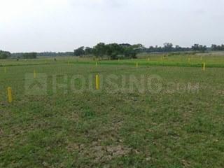 Gallery Cover Image of  Sq.ft Residential Plot for buy in Rasapunja for 250000