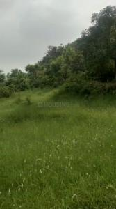 90000 Sq.ft Residential Plot for Sale in Morni, Panchkula