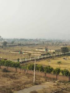 990 Sq.ft Residential Plot for Sale in Keshwana Rajput, Neemrana