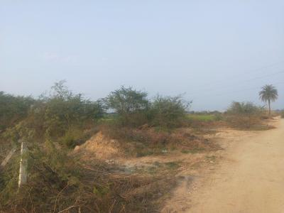 Gallery Cover Image of 15000 Sq.ft Residential Plot for buy in Murshadpur for 75000000