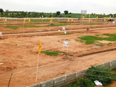 Gallery Cover Image of  Sq.ft Residential Plot for buy in Shamshabad for 12480000
