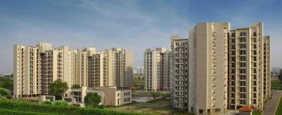 Gallery Cover Image of 1100 Sq.ft 2 BHK Apartment for rent in Sector 86 for 12000