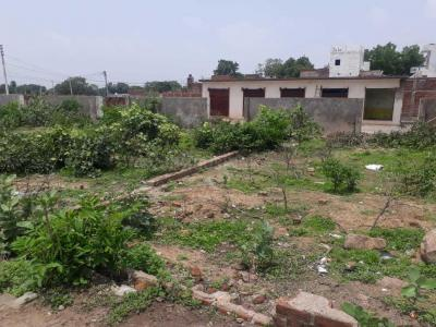 Gallery Cover Image of  Sq.ft Residential Plot for buy in Pitambra Nagar for 720000