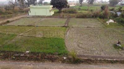 675 Sq.ft Residential Plot for Sale in Doiwala, Dehradun