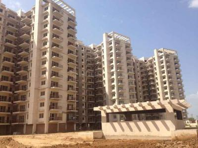 Gallery Cover Image of 1300 Sq.ft 2 BHK Apartment for buy in Avalon Rangoli, Kapariwas for 2500000