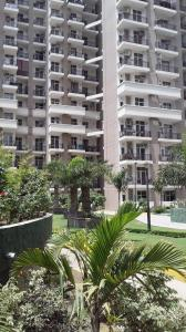 Gallery Cover Image of 1250 Sq.ft 2 BHK Apartment for rent in Skytech Matrott, Sector 76 for 19000