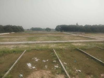 1000 Sq.ft Residential Plot for Sale in Amausi, Lucknow