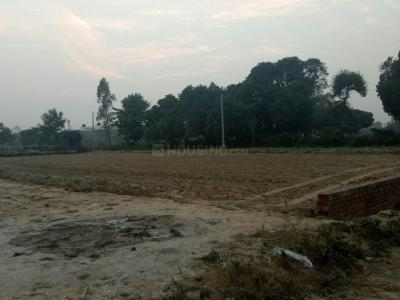 Gallery Cover Image of  Sq.ft Residential Plot for buy in Gomti Nagar for 1350000