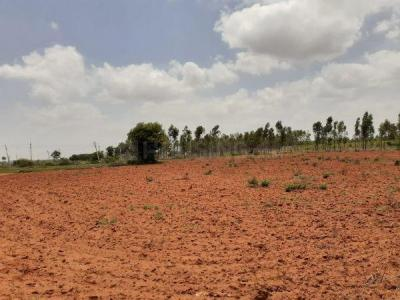 4000 Sq.ft Residential Plot for Sale in Budigere, Bangalore