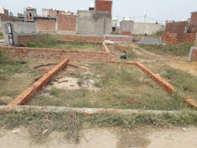 Gallery Cover Image of  Sq.ft Residential Plot for buy in Tilpata Karanwas for 715000