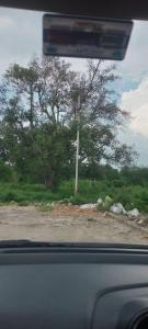 875 Sq.ft Residential Plot for Sale in Indira Nagar, Lucknow