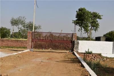 495 Sq.ft Residential Plot for Sale in Noida Extension, Greater Noida