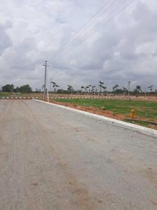 1584 Sq.ft Residential Plot for Sale in Mallepally, Hyderabad