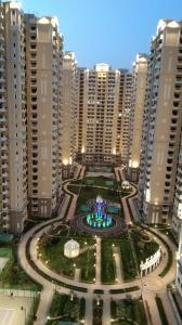 Gallery Cover Image of 1735 Sq.ft 3 BHK Apartment for rent in Chi V Greater Noida for 17000