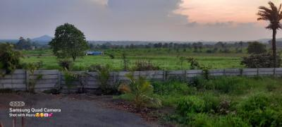 5000 Sq.ft Residential Plot for Sale in Mirjapur, Indore