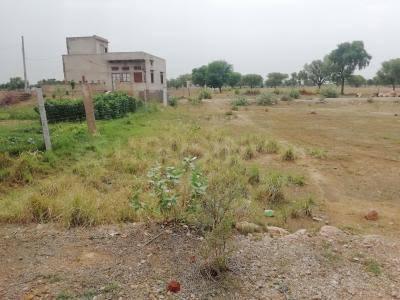900 Sq.ft Residential Plot for Sale in Shiva Nagar, Yadgir