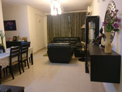 Gallery Cover Image of 1180 Sq.ft 2 BHK Apartment for rent in Amrapali Princely Estate, Sector 76 for 20000