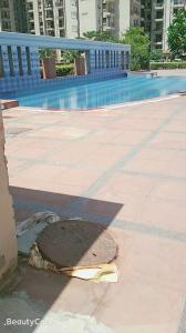 Gallery Cover Image of 1576 Sq.ft 3 BHK Apartment for rent in Sector 86 for 15000