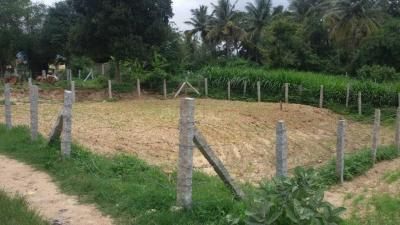 Gallery Cover Image of 5179 Sq.ft Residential Plot for buy in Kanmanike for 11500000