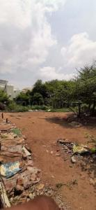 15000 Sq.ft Residential Plot for Sale in Subhanpura, Vadodara
