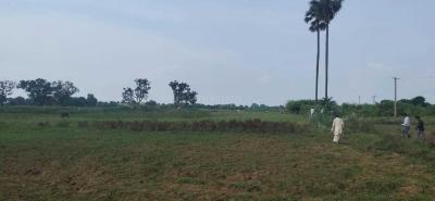 1200 Sq.ft Residential Plot for Sale in Khajpura, Patna